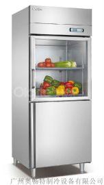 广州奥畅特D460L2-PS两门直冷高身冷柜 冷冻柜 冷藏柜