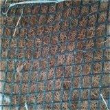贵州安顺抗冲生物毯护坡绿化材料直供