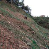 边坡防护钢网-边坡防护钢丝网-边坡防护钢丝绳防护网