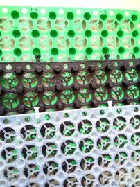 蓄排水板 屋顶绿化小区园林种植地下蓄水排水保护板
