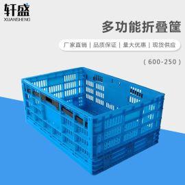 轩盛,600-250折叠筐,折叠收纳筐,塑料周转筐