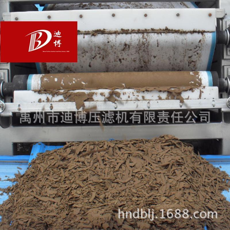【省优】带厂家供应迪博牌污水处理设备 带式污泥过滤机