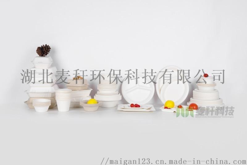 一次性環保原色可降解紙漿快餐盒紙碗紙碟盤甘蔗漿食具