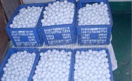高尔夫练习球 双层 白色 高尔夫球厂 大量现货 可印刷LOGO