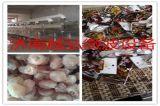 包装食品微波杀菌机/灭菌设备专业生产厂