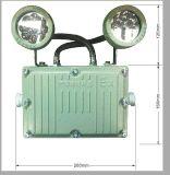 防爆照明应急灯(LED光源),防爆指示灯