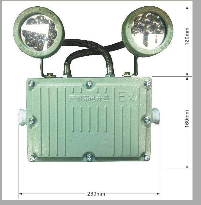 防爆照明應急燈(LED光源),防爆指示燈