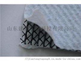 三维复合排水网  专注专业生产厂家