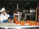 番茄杀菌机 微波辣椒酱灭菌设备 瓶装番茄酱杀菌机 价格 图片