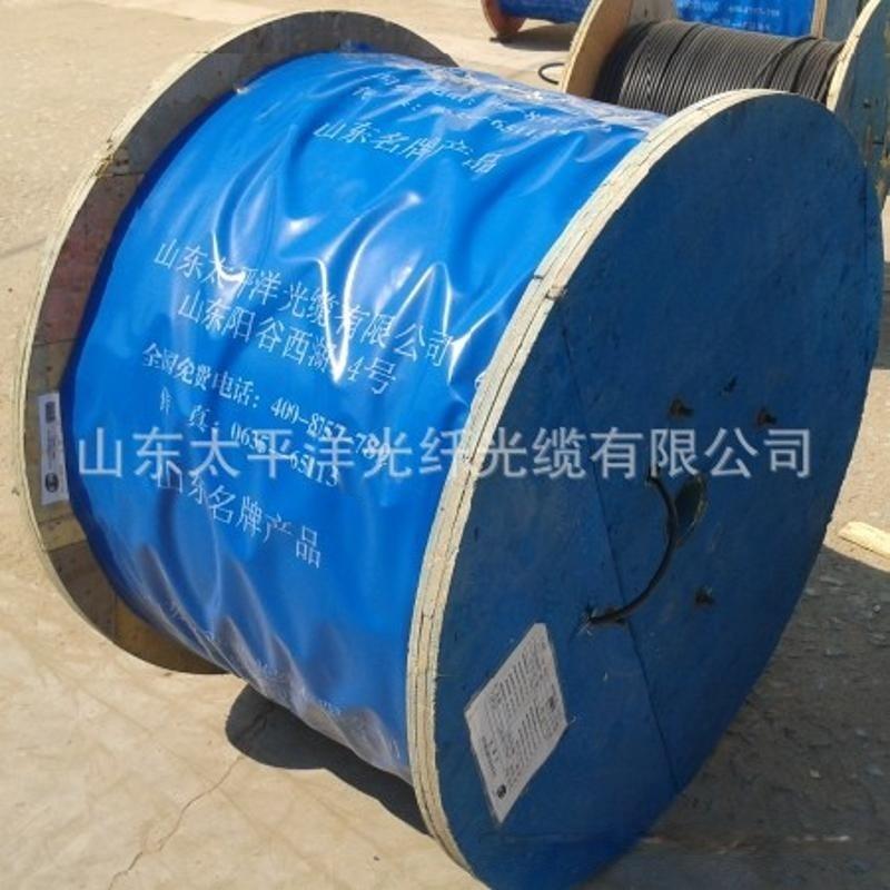 山東太平洋光纖光纜有限公司 室外光纜 管道架空直埋鋪設 廠家