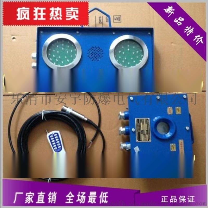 煤礦ZSB127礦用水位報 裝置 高低水位報 器