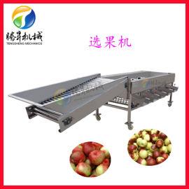 不锈钢水果大小分选机 青州蜜桃选果机