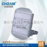 ZGD246 LED泛光燈/投光燈加油站