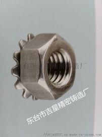 不锈钢紧固件 304、316不锈钢非标螺母