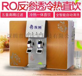 家用净水器直饮加热一体机厨房台壁挂纯水机