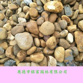 广东天然鹅卵石 鱼池鹅卵石价格  杂色鹅卵石1