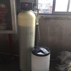 4吨地下井水硬度软水设备4吨防垢软水机葫芦岛销
