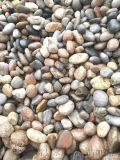 陽泉1-3公分河卵石   永順變壓器鵝卵石出售