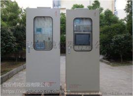 TR-9200型焦炉煤气氧含量在线分析系统  煤气氧分析仪、煤气分析仪、焦炉煤气中氧含量在线分析、电捕焦油器前后管道中氧气分析仪、焦炉煤气氧分析系统、焦炉煤气氧
