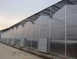 金盟帶你瞭解陽光板溫室的用途及主體配置