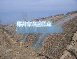 河南温室大棚郑州蔬菜温室建造成本,大棚骨架设计加工建设