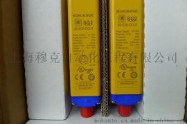 原装进口意大利DATALOGIC  安全光栅SG2-30-105-OO-X特价热