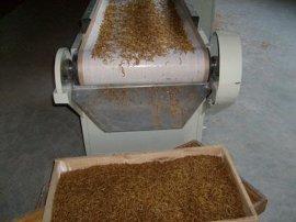 微波黄粉虫烘干设备