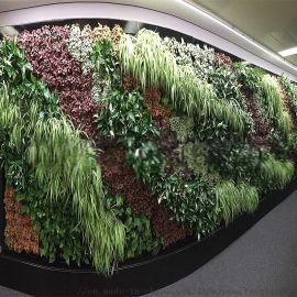 郑州枫林园艺仿真植物墙假植物墙绿墙墙面装饰造景