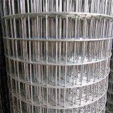不鏽鋼電焊網 鋼絲焊接網規格型號齊全現貨供應