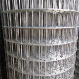 不锈钢电焊网 钢丝焊接网规格型号齐全现货供应