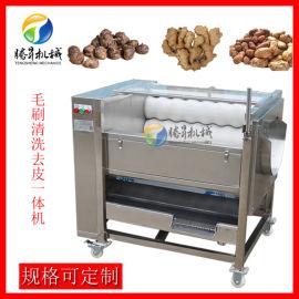 自动毛辊清洗机 土豆清洗去皮机 厂家定制