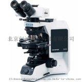 偏光顯微鏡BX53P