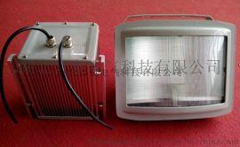 NSE9720-J70W壁挂式应急通路灯