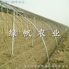 供应冬暖式蔬菜大棚 钢管竹木/PVC冬暖式  土墙体温室