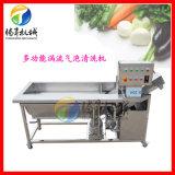 供应新款不锈钢气泡果蔬清洗机 涡流式洗菜机 商用