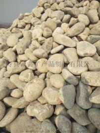 诚鑫厂家供应建筑路面用鹅卵石  抛光天然大鹅卵石