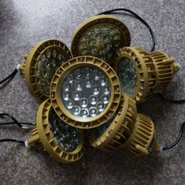 BZD180-101防爆免维护LED照明灯60W
