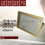 華榮LED防爆燈CCD97免維護LED防爆燈投光燈