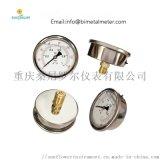 YN-60 2.5inch 轴向充油耐震压力表
