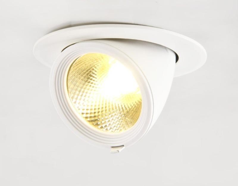 高端LED天花燈,象鼻燈天花燈