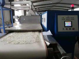 微波干燥设备技术厂家
