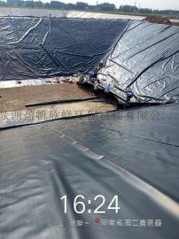 西安养殖防渗膜,土工膜,膨润土防水毯厂家