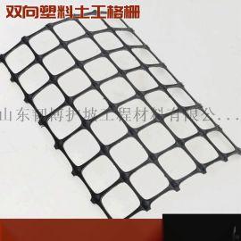 路基加固双向拉伸塑料土工格栅防护用双向塑料土工格栅