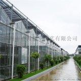 德源溫室-城市玻璃溫室大棚建設