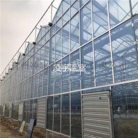 凌宇温室 连栋玻璃温室 温室设计 温室工程