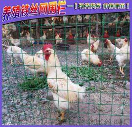 安平養殖養雞鐵絲網 散養雞鐵絲網 養殖圍欄