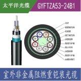 太平洋光纜 GYFTZA53-24B1.3 24芯單模光纖 非金屬阻燃鎧裝光纜