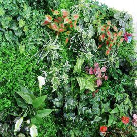 仿真植物墙 绿植墙 室内外景观装饰背景墙 装饰植物仿真草坪