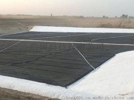 HDPE土工膜垃圾填埋場專用土工濾網