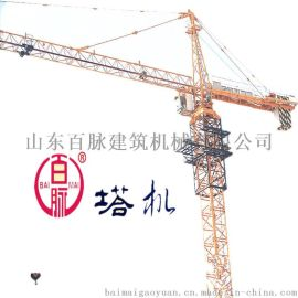 QTZ50系列塔吊起重机百脉厂家供应